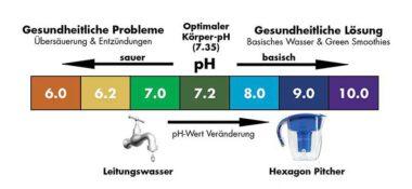 Prof. Dr. Otto H. Warburg: Die zellularen Bedingungen zum Ausbruch degenerativer Erkrankungen und Krebs.