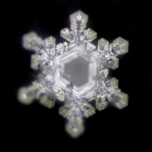 Gesundheit und Wasser-Kristallfotos nach EMOTO