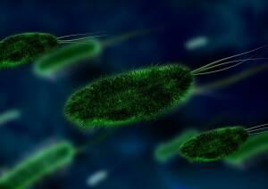 Pilzinfektionen und Natriumbikarbonat