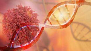 Natriumbikarbonat und Krebs