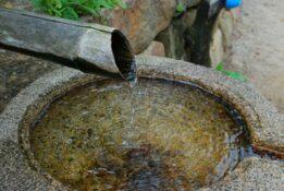 Heilwasser kaufen